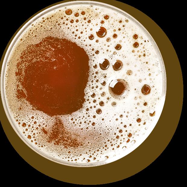 https://clepsydrabrewing.gr/wp-content/uploads/2020/05/beer_transparent.png
